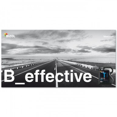B_effective (Poster)