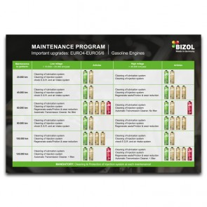 Maintenance Program for Gasoline Engines